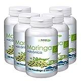 1000 Stück vegane Bio Moringa Presslinge (500 Gramm) von Moringa Volcánica kaufen! Bio Presslinge frisch aus Teneriffa in Rohkostqualität!