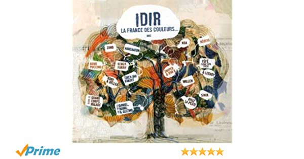 france couleurs idir