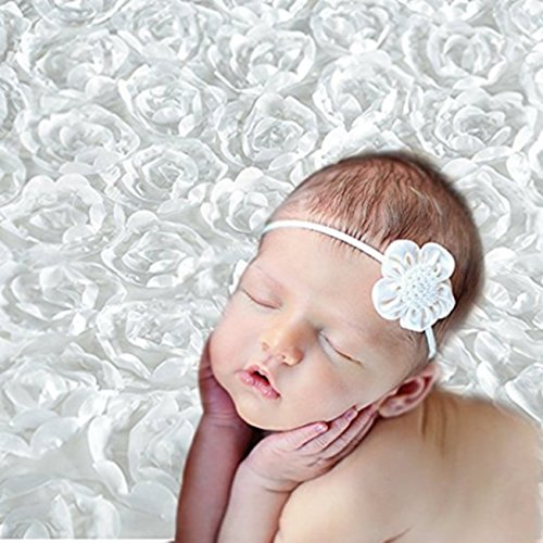 e1aa2bee5 Babymoon 3D Rose Floral Beanbag Blanket Backdrop Rug – Beautiful Photography  Photo Prop