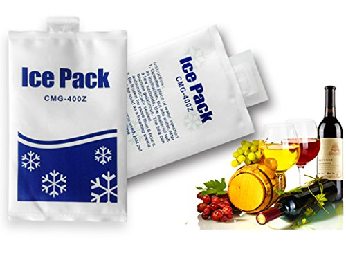 Pack de glace réutilisable 300–500 fois Cooler Packs, 10PACK