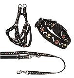 Ein Set - Halsband, Hundegeschirr Step-In, Hundeleine - verstellbar, Zugentlastung, stabil, bequem, weich, Farbe Schwarz - TX-ZOO/Zb-BLACK