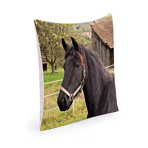 Black Horse Kissen (Muccum Black-Horse Dekorative Kissenbezug Kissen Baumwolle und Leinen Büro Ecke Kissen Kissenbezug Sofa Platz Sofa Kissenbezug 18