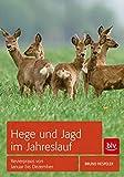 Hege und Jagd im Jahreslauf: Revierpraxis von Januar bis Dezember (BLV)