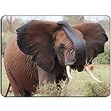 Afrikanischer Elefant Mousepad - Kein Beleg Mauspad