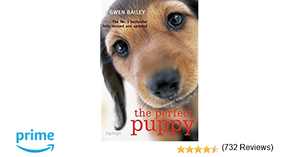 best book for first time puppy owners