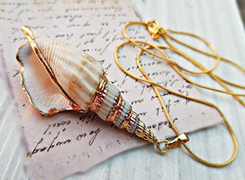 Cadena de oro de 18 quilates Collar de conchas colgante con caja de regalo - Colgante de concha real adorno de oro joyas de la naturaleza para las mujeres regalo del día de la madre