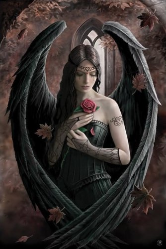 Gothic/Fantasy Posters: Anne Stokes - Angel Rose Poster - 91.5x61cm