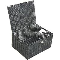 Arpan Grande resina Woven Basket archiviazione scatola con coperchio & Lock - (Basket Archiviazione)