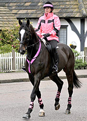 Equisafety Adjustable Neck band - Prenda, color rosa, talla Talla única