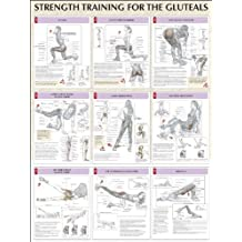 Buttocks Poster (Strength Training Anatomy)