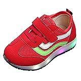 Beikoard Kinderschuhe, Flash-Schuhe, helle Schuhe, Netzschuhe, Sportschuhe Leuchtende Sport Laufschuhe