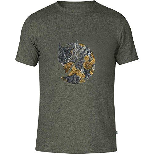 Fjällräven Herren Rock Logo T-Shirt, Mountain Grey, XS Preisvergleich