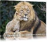 Pixxprint schöner Löwe mit Jungtier auf Leinwand, XXL riesige Bilder fertig gerahmt mit Keilrahmen, Kunstdruck auf Wandbild mit Rahmen, günstiger als Gemälde oder Ölbild, kein Poster oder Plakat