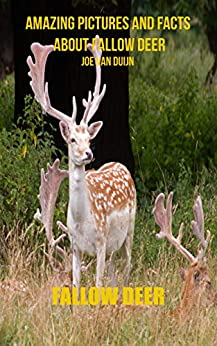 Fallow Deer: Amazing Pictures and Facts About Fallow Deer Epub Descarga gratuita