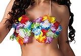 Boland 52380 - Büstenhalter Hawaii in Muschelform für Erwachsene, Einheitsgröߟe, mehrfarbig