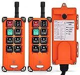 NEWTRY F21-E1B Industrie-Doppel-Emitter, elektrischer Hebekran Funk Funk-Fernbedienung Sender & Empfänger Druckknopfschalter - F21E1B Transmitter + DC 12V Receiver