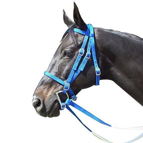 Intrepid International Race Nylon Horse Bridle, Royal Blue