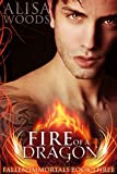 Fire of a Dragon (Fallen Immortals 3) - Paranormal Fairytale Romance