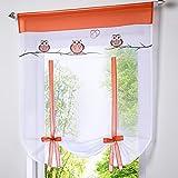 HongYa Raffrollo Bindegardine Eule Bestickte Küche Gardine Transparenter Vorhang Voile mit Tunnelzug H/B 140/100 cm Terra