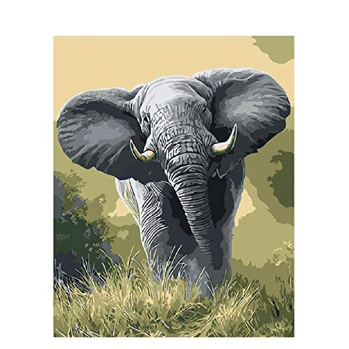 Puzzle Adulto 1000 Piezas 3D Puzzle Elefantes Hierba Animal Bricolaje Tiempo Libre...