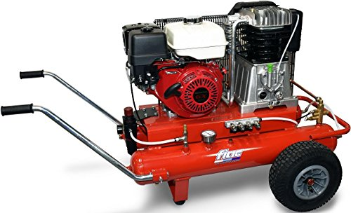 FIAC AGRI 90/678 Motore Honda
