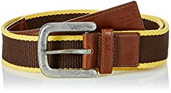 Peter England Mens Cotton Belt (8907155701115_RL0353 _Large_Brown and Yellow)