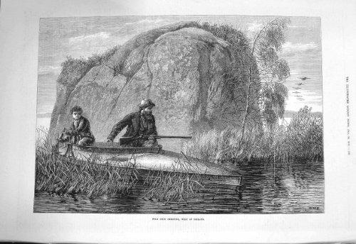 Pato Salvaje 1875 Que Tira Deporte del Barco de Río de Irlanda [Cocina y Hogar]