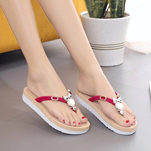 Ouneed® Damen Sandalen , Damen Sommer Eule Schuhe Peep-Toe Low Schuhe glitzer Römische Sandalen Damen Zehentrenner Flip Flops Rot