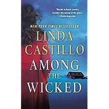 Among the Wicked (Kate Burkholder Novels)