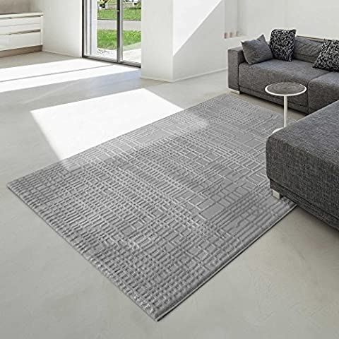 Modern Design Rug in Grey Dichroic Staubhemmender Living Room Rug in Various Sizes With Good Quality, grey, 80 x 300