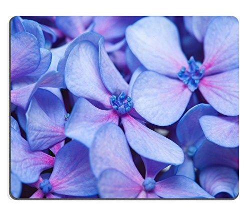 Liili Mauspad Naturkautschuk Mousepad Bild-ID 32162073lila blue hydrangea Blumen natürlichem - Lila Hydrangea-bilder