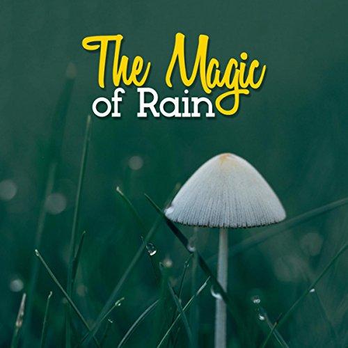 Thrushes in the Rain -