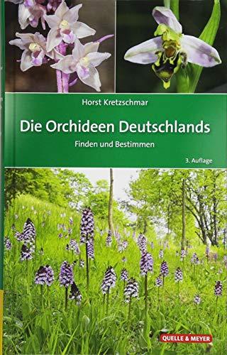 Orchideen ich meine