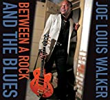 Songtexte von Joe Louis Walker - Between A Rock And The Blues