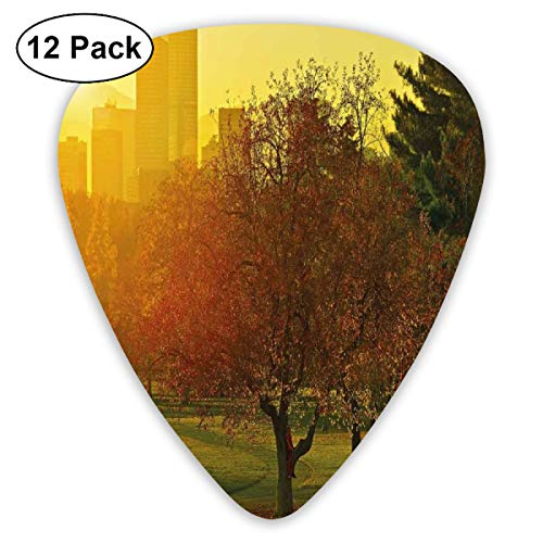 act Art Colorful Designs,Sunset Over The City Park Colorado Skyline Autumn Theme Scenic Picture,Unique Guitar Gift,For Bass Electric & Acoustic Guitars-12 Pack ()