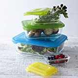 Joseph Joseph Nest Glass Storage Dishes - Multi-Colour, Set of 4