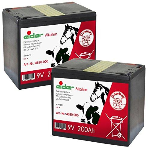 Eider Doppelpack: 2X 9V-Alkaline-Trockenbatterie 200 AH - Sehr Lange Laufzeit Bei geringem Verbrauch - Doppelpack kaufen und Sparen