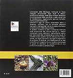 Image de L'oro rosso delle Alpi. Manuale tecnico-scientifico di produzione dello zafferano