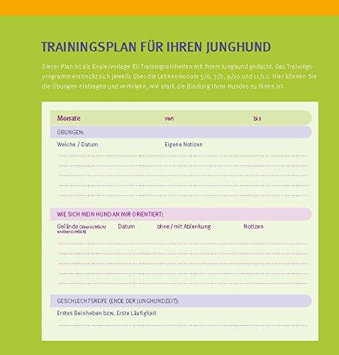 Welpen-Erziehung: Der 8-Wochen-Trainingsplan für Welpen. Plus Junghund-Training vom 5. bis 12. Monat (GU Tier Spezial) - 3
