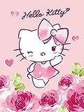 Hello Kitty Kuscheldecke Plaid Baby 75x 100cm Baby Mädchen berühmten chatonne Sanrio Baby Girl