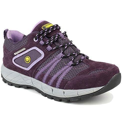 Senhoras Cotswold Sevenwells Sapatos Curta Caminhada Roxo