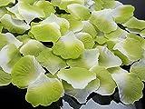 Deko - Rosenblätter zum streuen 100 Stück Hochzeit Tischdeko (hellgrün Farbverlauf)