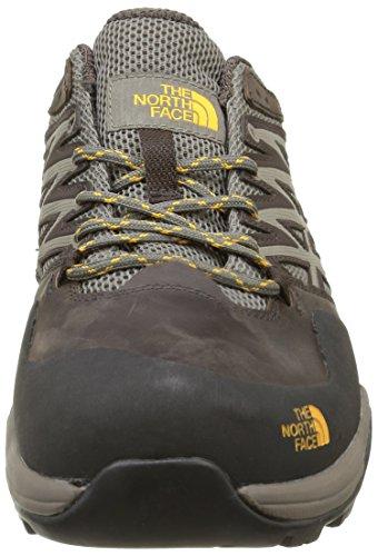 The North Face M Hedgehog Hike Gtx, Chaussures de Randonnée Homme Marron - Marrón (Morel Brown / TNF Yellow)
