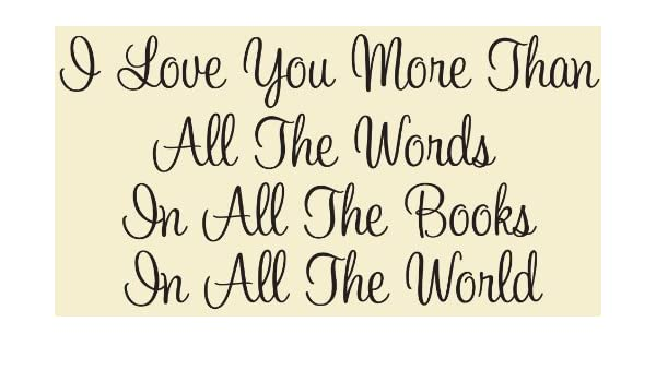 I Love You More Than All The Words In All The Books In All The World Inspirational Wall Quote Wall Sayings Love Quotes Amazon Co Uk Kitchen Home