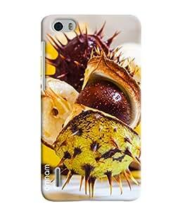 Omnam Dragon Fruit Printed Designer Back Case Hauwei Honor 6