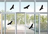 5 Vogel Aufkleber - Vögel Fenster Greifvogel Fensterbilder je 24x10cm B320-18 (schwarz)