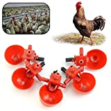 Runrain mangime Automatico Bird Coop pollame Pollo Fowl Drinker Acqua Potabile CUPS5PCS