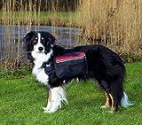 Trixie 30102 Rucksack, für Hunde, M: 23 × 15 cm, schwarz