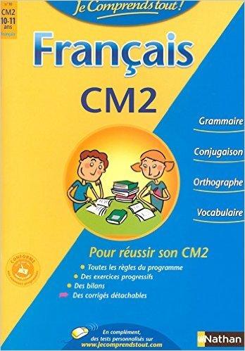 JE COMPRENDS TOUT FRANCAIS CM2 de ISABELLE PETIT-JEAN ,BRUNO FAZIO ,MAURO MAZZARI (Illustrations) ( 2 juillet 2008 )