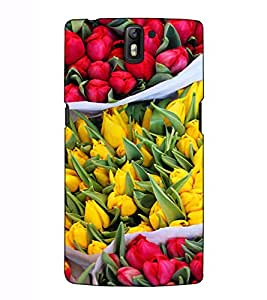 Fuson Designer Back Case Cover for OnePlus One :: OnePlus 1 :: One Plus One (Flowers Lotus Nature Colourful)
